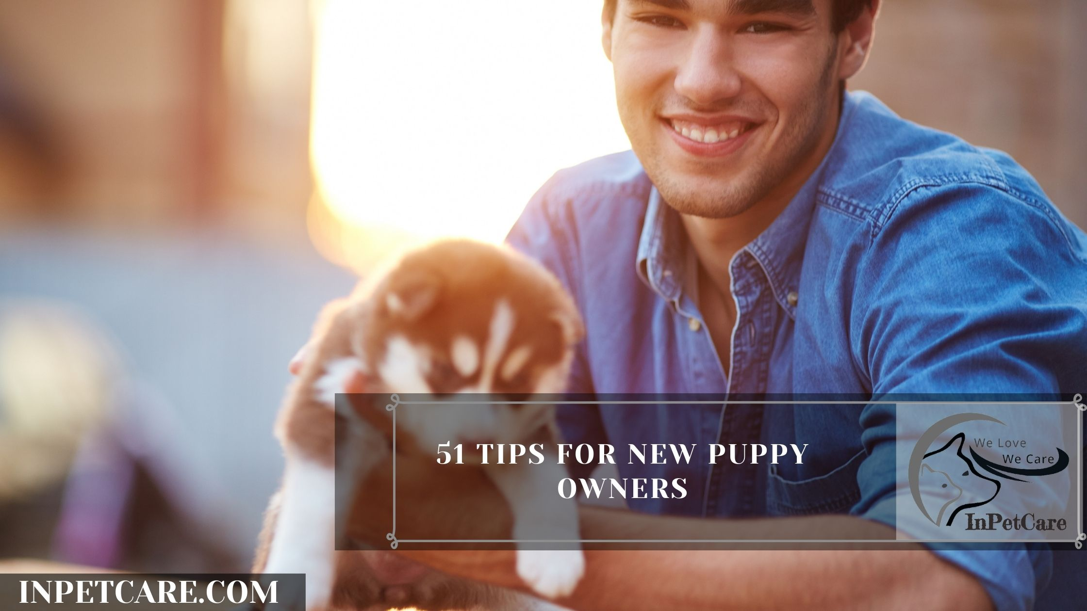 51 Tips For New Puppy Owners