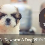 How To Deworm A Dog With Tobacco?
