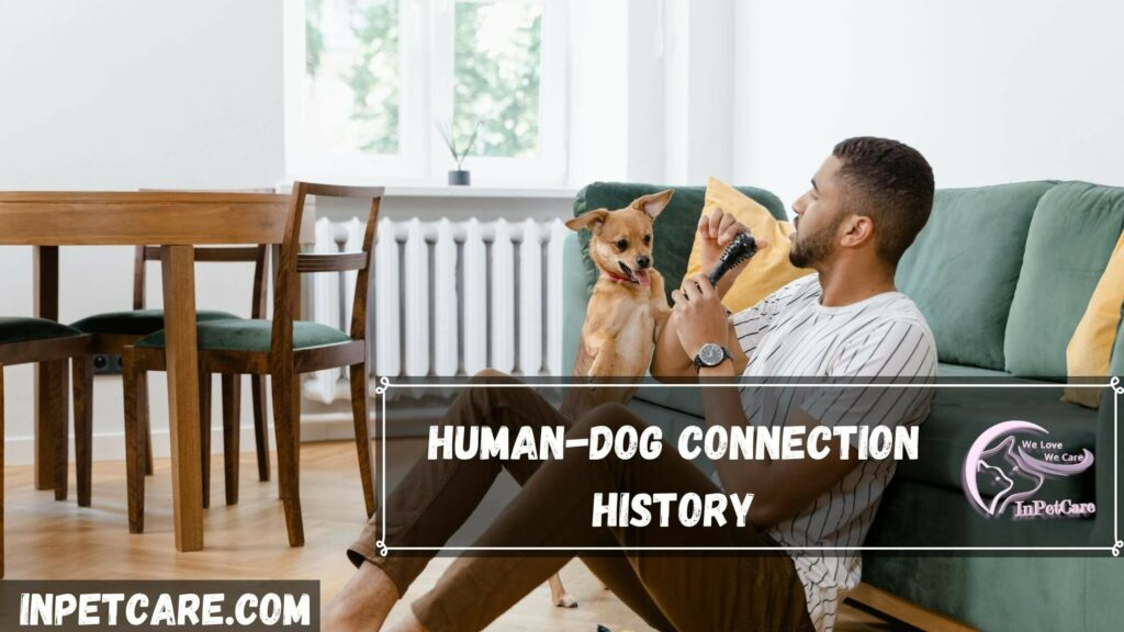 The Chemistry Between Humans And Dogs